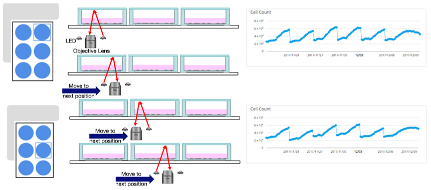 Fig.1 CM20 can automatically measure quantitative data during passage of cells seeded in six-well plate
