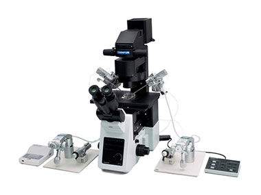 IX3-ICSI/IMSI-Laser