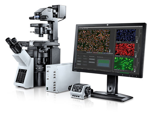 ScanR High-Content Screening