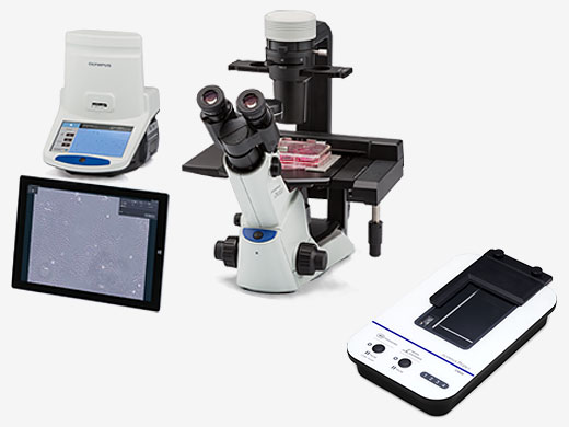 Quantitative Solutions for Cell Culture and Quality Control