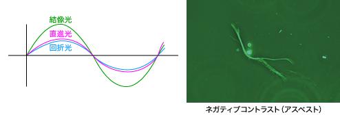 図3 ネガティブコントラストまたはブライトコントラスト(同位相)