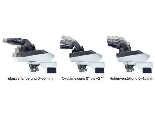 Ein ergonomischer Beobachtungstubus