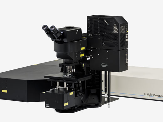 Upright Microscope System — Designed for Multiphoton Microscopy