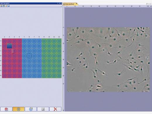 Multi plate imaging acqusiton