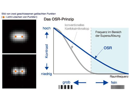 Das OSR-Prinzip