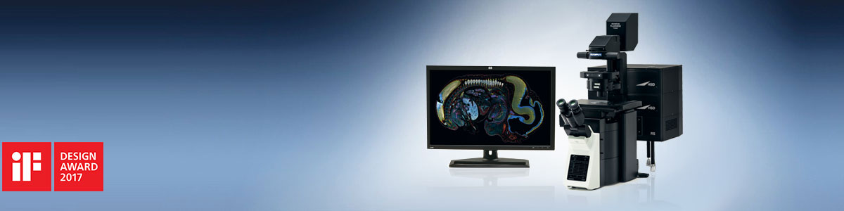 Confocal Laser Scanning Microscope – FV3000   Olympus Life