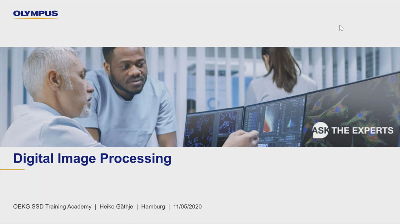Digital Image Processing: Point- and Local Operation Filters