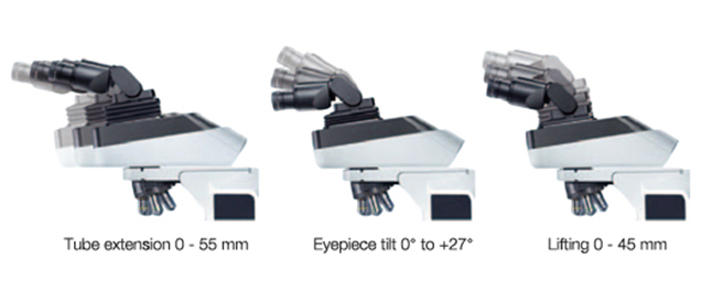 Adjustable observation head of the BX46 upright microscope from Olympus. The head tilts up and down and slides forward and backward and the height is adjustable to adapt to the ideal and ergonomic position and posture of the individual user.