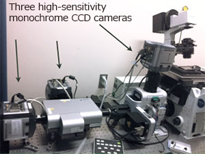 A conventional simultaneous three-color fluorescence observation system