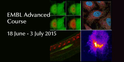 EMBL Advanced Course: Fluorescence Imaging Techniques