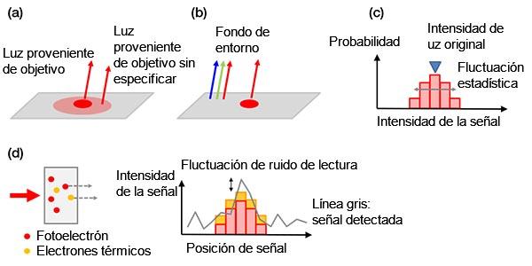 Figura 4 - Ejemplos de ruidos de fondo: a) Fondo biológico provocado a partir de una mancha no específica o autofluorescencia; b) luz ambiental de la habitación reflejada en un portaobjetos; c) ruido de emisión, d) ruidos en una cámara que contiene electrones térmicos generados en un sensor (izquierda) y ruido de lectura (derecha). Los electrones térmicos pueden reducirse enfriando el sensor.