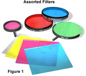 Photomicrography - Filters for Color Photomicrography | Olympus Life