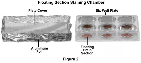 Floating Section Staining Chamber Configuration