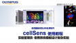 cellSens acquisition-experiment manager-03 design XYZ multi channel multi points also timelapse experiment by default templates