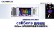 cellSens analysis-use Intensity profile and dynamic ROI to measure timelapse intensity
