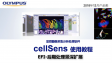 cellSens processing-EFI 01 post EFI process of Z stacks