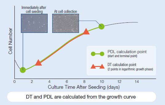 DT and PDL are calculated from the growth curve