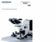 Fixed Stage Microscopes BX61WI / BX51WI